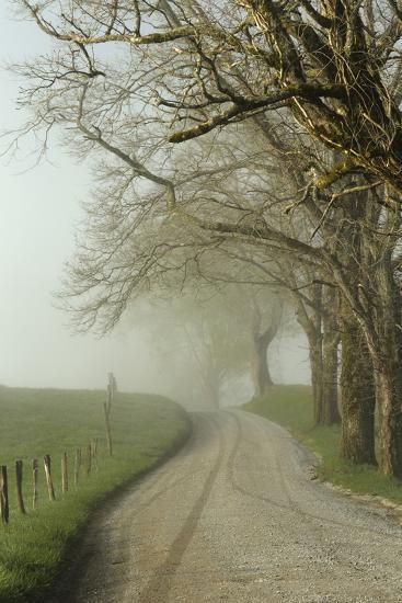 Early Morning View of Sparks Lane, Cades Cove, Great Smoky Mountains National Park, Tennessee-Adam Jones-Photographic Print