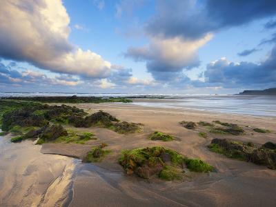 Early Morning, Widemouth Bay, Cornwall, England, United Kingdom, Europe-Chris Hepburn-Photographic Print