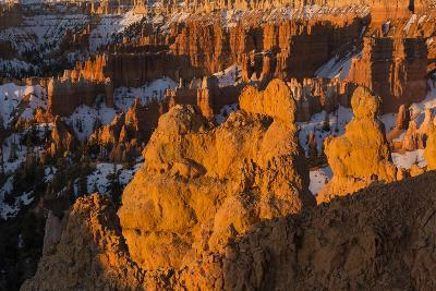 Early Sunrise Light Illuminating The Hoodoos Of Bryce Canyon, Bryce Canyon National Park, Utah-Mike Cavaroc-Photographic Print