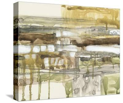 Earth Layers II-Jennifer Goldberger-Stretched Canvas Print