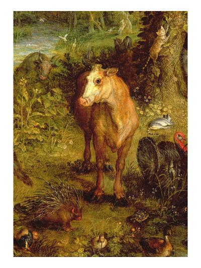 Earth or the Earthly Paradise, Detail of a Cow, Porcupine and Other Animals, 1607-08-Jan Brueghel the Elder-Giclee Print