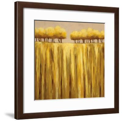 Earth Tones II-Rita Vindedzis-Framed Art Print