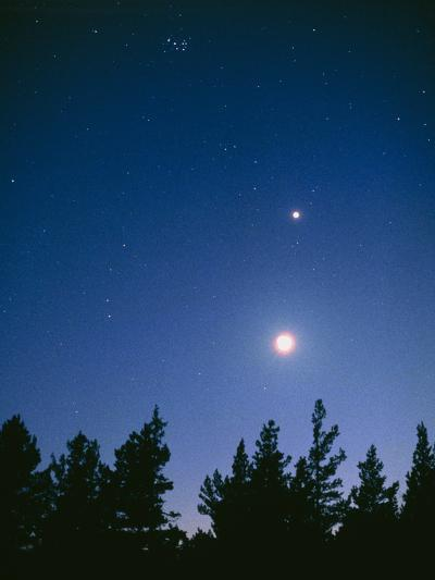 Earth View of the Planet Venus with the Moon-Pekka Parviainen-Photographic Print