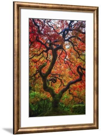 Earthal Tree Alive-Darren White Photography-Framed Giclee Print