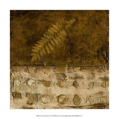 Earthen Textures IX-Beverly Crawford-Premium Giclee Print