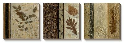 Earthen Textures-Beverly Crawford-Canvas Art Set