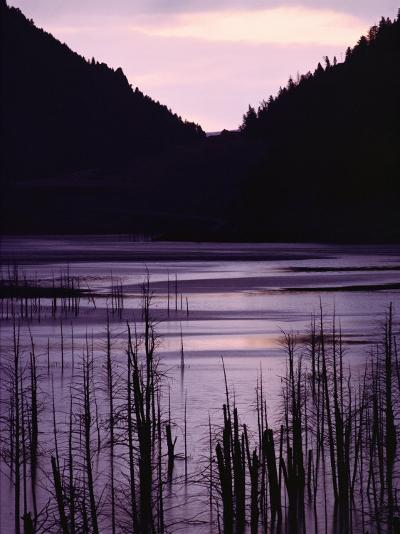 Earthquake Lake, Madison River Quake Area, Gallatin National Forest-Raymond Gehman-Photographic Print