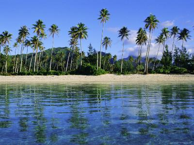 East Coast, Motu Nao Nao, Raiatea Island, Society Islands Archipelago, French Polynesia-J P De Manne-Photographic Print