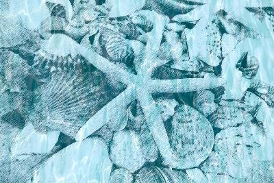 East Coast Shells II-Jairo Rodriguez-Art Print