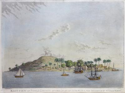 East View of Poolo Chinco, Coast of Sumatra, the Residence of W. Grant Esq., Engraved Moffat, 1802-William Grant-Giclee Print