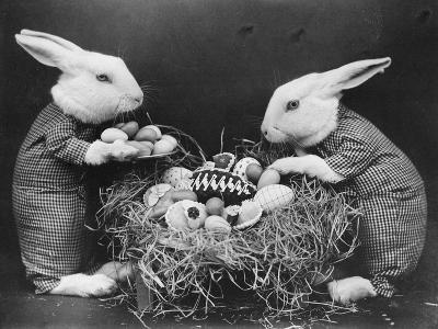 Easter Bunnies and Eggs--Photographic Print