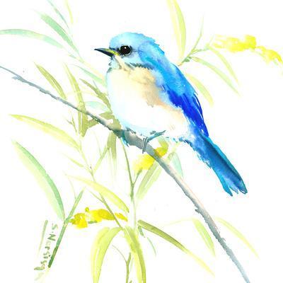https://imgc.artprintimages.com/img/print/eastern-bluebird_u-l-f8emuo0.jpg?p=0