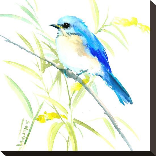 Eastern Bluebird-Suren Nersisyan-Stretched Canvas Print