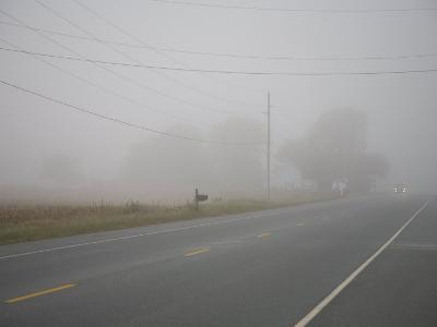 Eastern Shore Early Morning Fog Blankets the Road-Stephen St^ John-Photographic Print