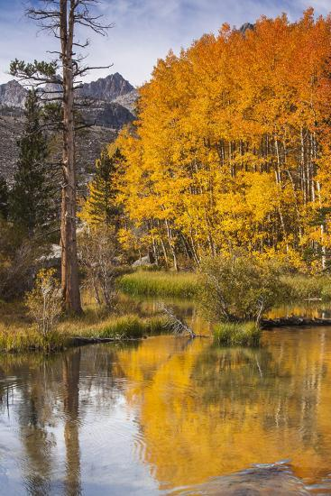 Eastern Sierra, Bishop Creek, California Outlet and Fall Color-Michael Qualls-Photographic Print