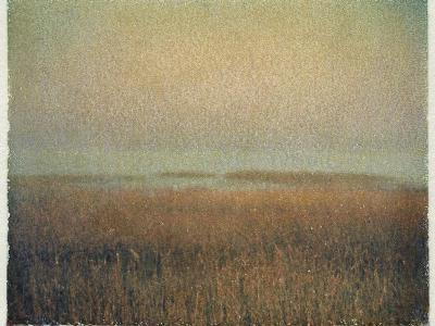 Eastham Marsh-Jennifer Kennard-Photographic Print