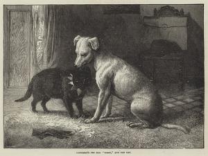 Landseer's Pet Dog Tiney, and Pet Cat by Ebenezer Newman Downard