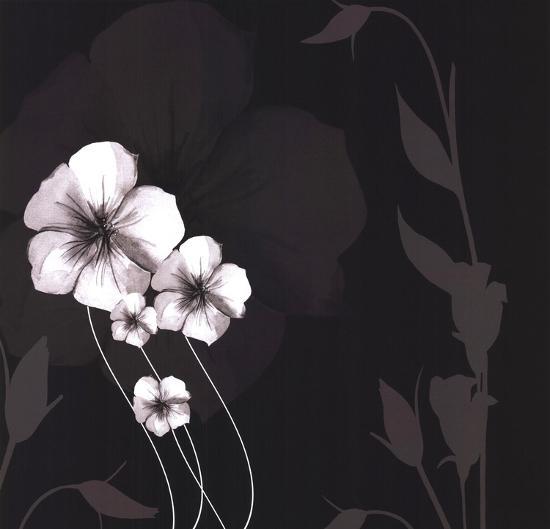 Ebony and Ivory III-Kate Knight-Art Print