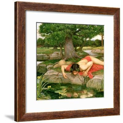 Tori Home Narcissus by John William Waterhouse Framed