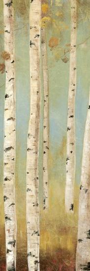 Eco Panel I-Andrew Michaels-Art Print