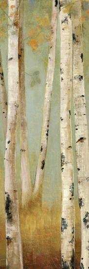 Eco Panel II-Andrew Michaels-Art Print