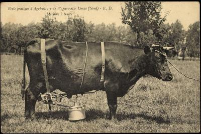 Ecole Pratique D'Agriculture De Wagnonville Douai, Nord, Machine a Traire--Giclee Print