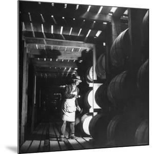 Employee in Warehouse of Jack Daniels Distillery Checking For Leaks in the Barrels by Ed Clark