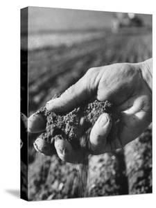 Farmer Holding a Handful of Soil by Ed Clark