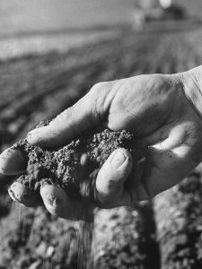 Farmer Holding a Handful of Soil by Ed Clark
