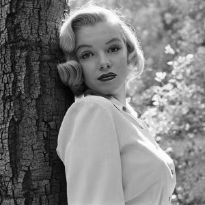 Beautiful Marilyn Monroe Black And White Photography Artwork For