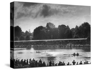 Rowers Competing in Rowing Event on Thames River by Ed Clark