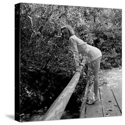 Starlet Marilyn Monroe