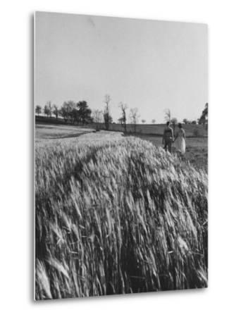 Young Couple Walking by a Grain Field