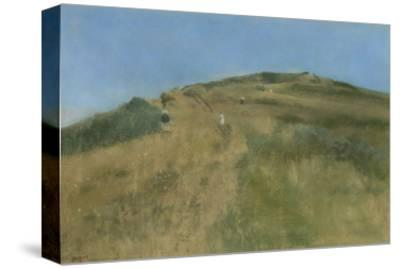 Dune Landscape Off a Steep Coast