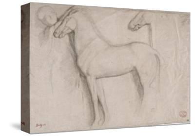 Feuille d'études : chevaux et croquis d'une tête d'adolescent