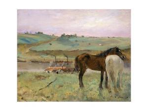 Horses in a Meadow by Edgar Degas