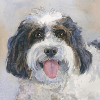 Archie Daisy Dog by Edie Fagan