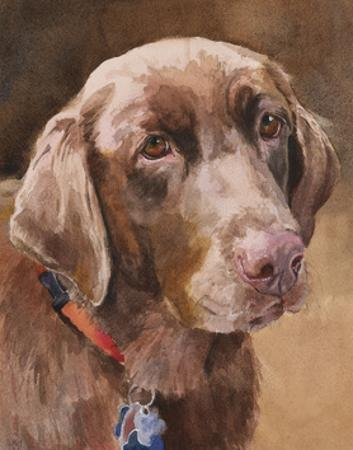 Bell Chocolate Lab by Edie Fagan