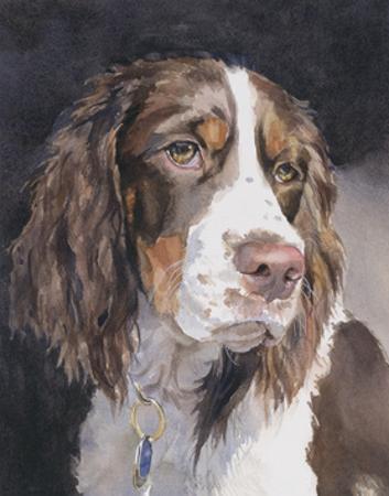 Lizzie Springer Spaniel by Edie Fagan