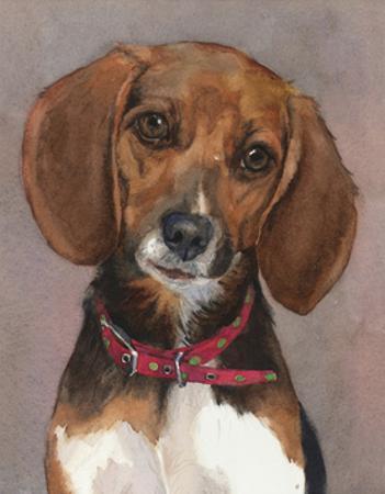 Lucy English Pocket Beagle by Edie Fagan
