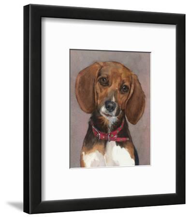 Lucy English Pocket Beagle