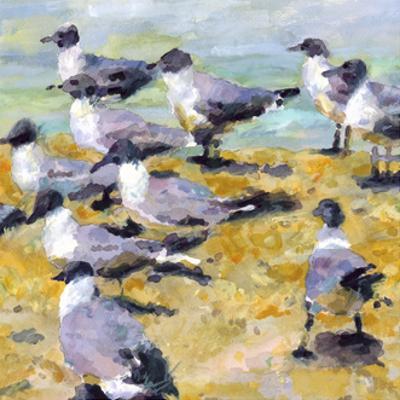 Sea Birds Watercolor I by Edie Fagan