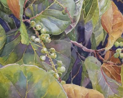 Sea Grapes II by Edie Fagan