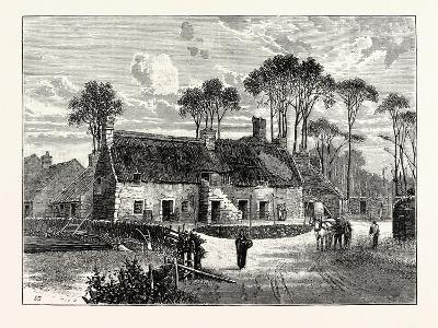 Edinburgh: Old Houses Echo Bank--Giclee Print