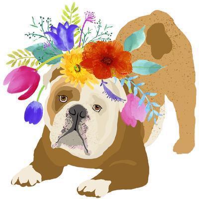 Flower Brown Dog