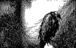 Poe: The Raven, 1845 by Edmund Dulac