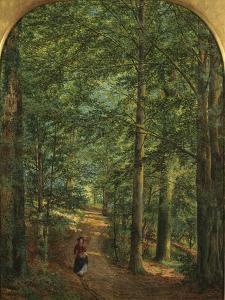 In the Woods by Edmund George Warren
