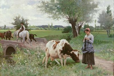 The Well Kept Cow, 1890