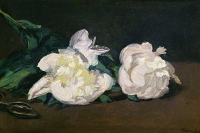 A Twig of White Peonies with Pruning Shears, 1864 by Edouard Manet