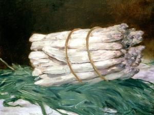 Bundle of Asparagus, 1880 by Edouard Manet